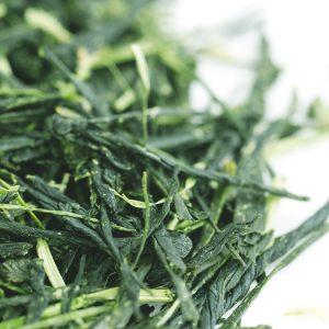 japoniška sencha arbata